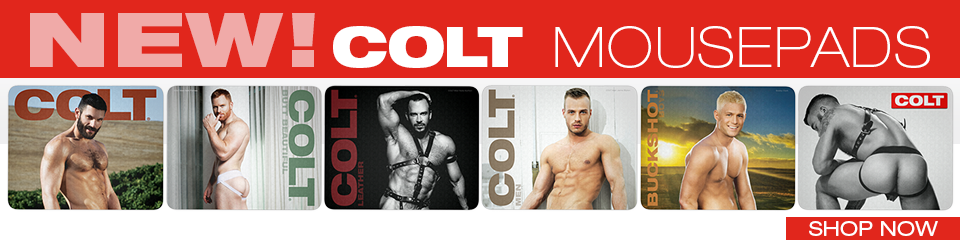 ColtStudioGroup.com Banner