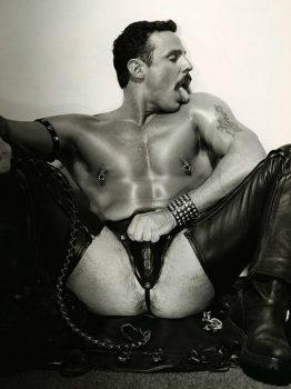 male muscle gay porn star Joe Falco | hotmusclefucker.com