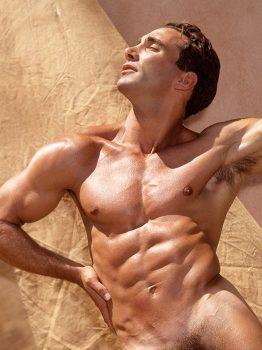 male muscle gay porn star Nikolas Hart | hotmusclefucker.com